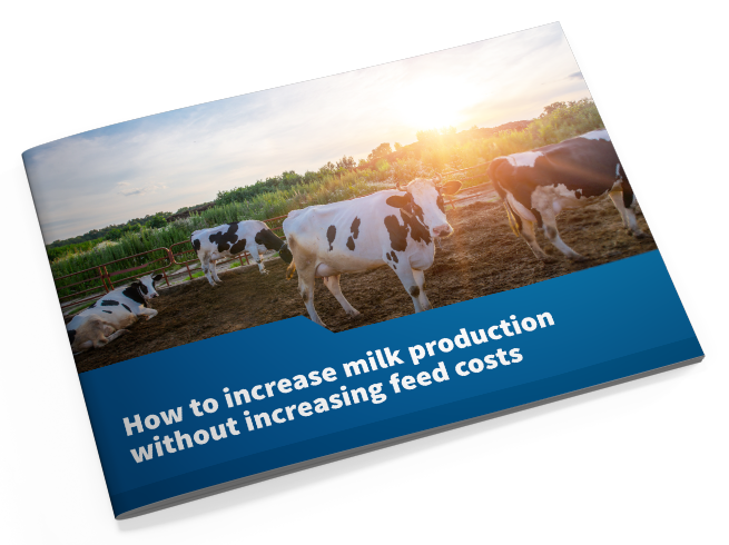 HOW TO INCREASE MILK PRODUCTION WITHOUT INCREASING FEED COSTS.